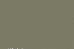 4184 | olive