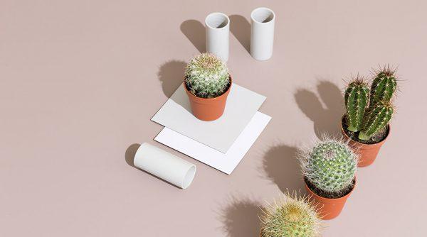 Fenix tafelblad op maat